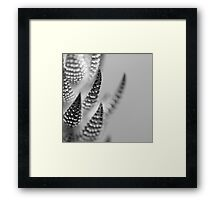 Blending In.  Framed Print