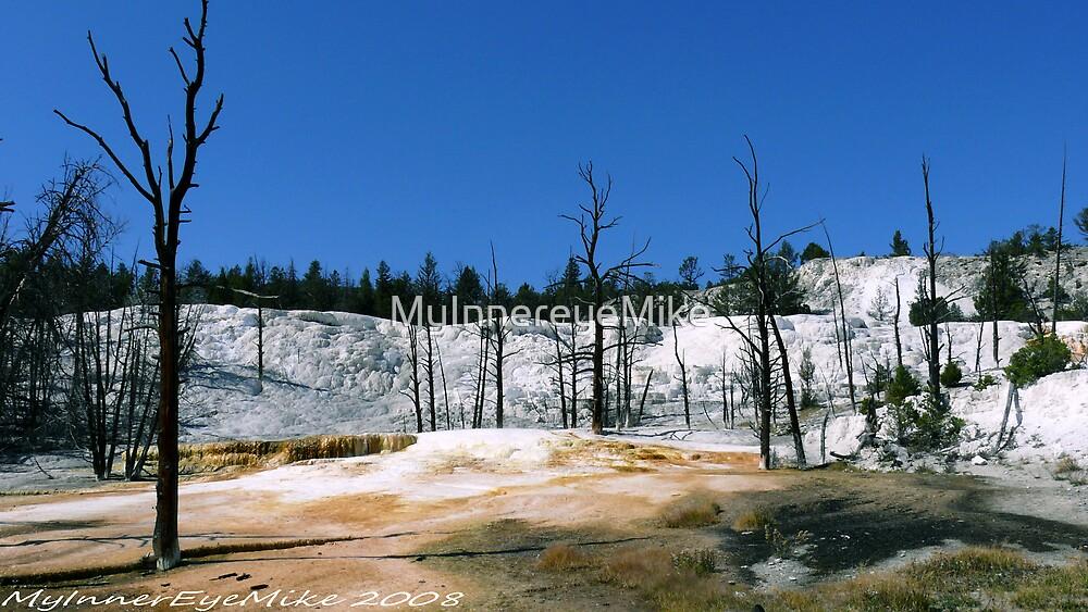 #391  Landscape At Yellowstone Park by MyInnereyeMike