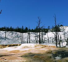 #391  Landscape At Yellowstone Park by MyInnereyeMike