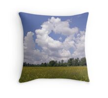Buttercups Flowers And Clouds Throw Pillow