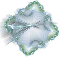 Square oyster shell by kenwalters