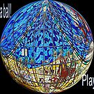 Life is a ball, play it! by Susan van Zyl
