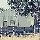 The Shearing Shed by Linda Lees