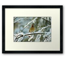 A Beautiful Winter Morning Framed Print