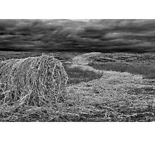 """""""Haystream"""" Photographic Print"""