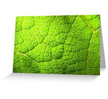 Nature's Crazy Paving Greeting Card