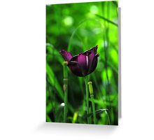 Ive been purple Greeting Card