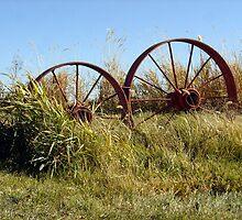 Wagon Wheels by blondmel