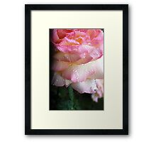 Waterfall of a Rose... Framed Print