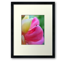 Fraction Framed Print