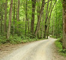 Road Less Traveled by Gary L   Suddath