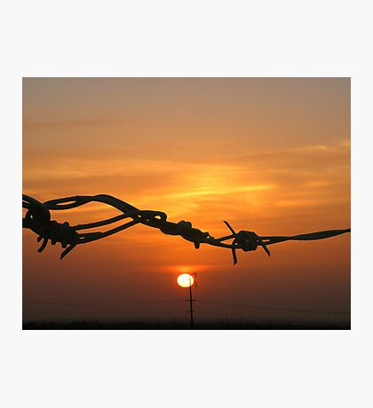 Sun through the wire Photographic Print