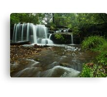 Hunts Creek Canvas Print