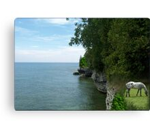 905-Off the Abyss Canvas Print