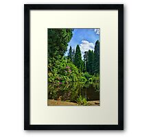 Reflective Nature Framed Print