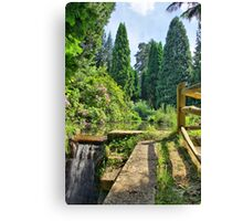 The Path to a Fall Canvas Print