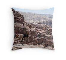 Donkey Heights Throw Pillow