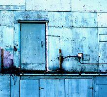 The Secret Door by Dawn Palmerley
