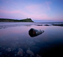 A Stone in Rockpool by stephen foote