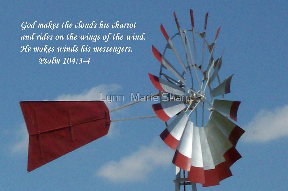 Wings of Wind by Marie Sharp