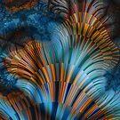 Marine Biota by rocamiadesign