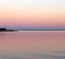 Evening View On Fire Island   Center Moriches, New York  by © Sophie W. Smith