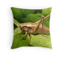 Jiminy Cricket! Throw Pillow