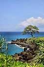 Wailea Hawaii by DJ Florek