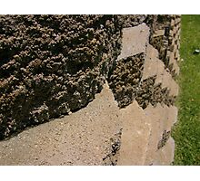 Bricks In A Row Photographic Print