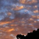 Cloudy Sunrise by Ashli Zis