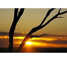 Sunrise Over Whitecliffs Photographic Print