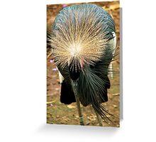 How do you like my hairdo? Greeting Card