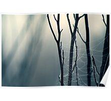 Moonlit Lattice Poster