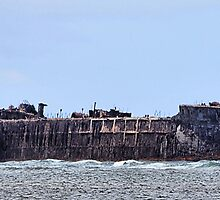 Lanai Shipwreck by DJ Florek