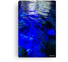 it's water Canvas Print
