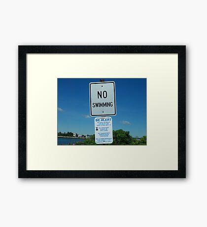 Ironic Framed Print
