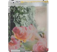 Exhale iPad Case/Skin