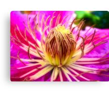 Dr Ruppell Canvas Print