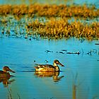 Two Shovelers by Robert Brown
