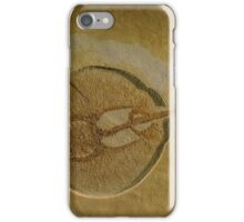 Flat Fish Fossil iPhone Case/Skin