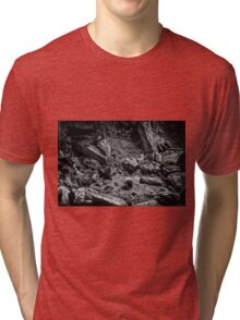 Intimations of Immortality Tri-blend T-Shirt