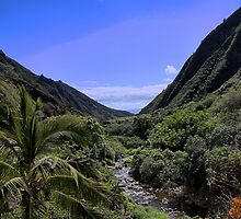 Iao Valley by DJ Florek