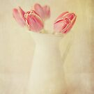 Textured Vintage Pink Tulips by Nicola  Pearson