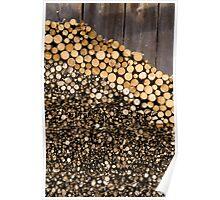 Wood I Poster
