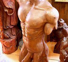 Body of Man by Dawn Palmerley