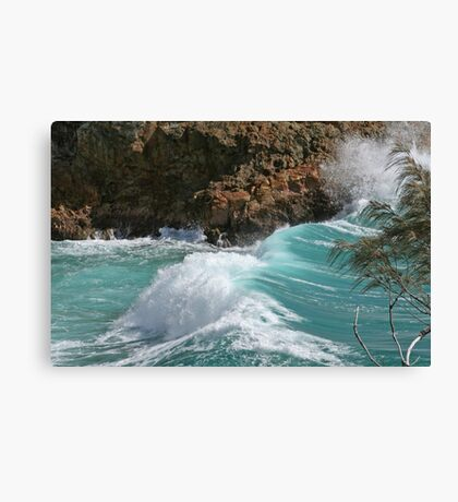 Power of Nature Canvas Print