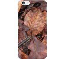 A Walk in the Woods #2 iPhone Case/Skin
