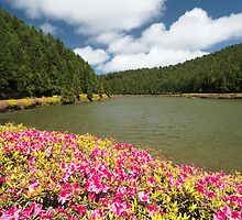 Azores Islands Landscapes by Gaspar Avila