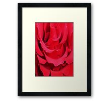 Beautiful Close Up Of Red Rose Petals Framed Print