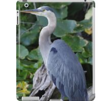 Great Blue Heron iPad Case/Skin